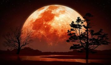 Strawberry-Moon-2019-will-June-Full-Moon-turn-Red-June-17-1140820